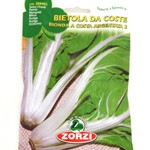 ZORZI SWISS CHARD SEEDS