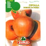 ZORZI ONION SEEDS